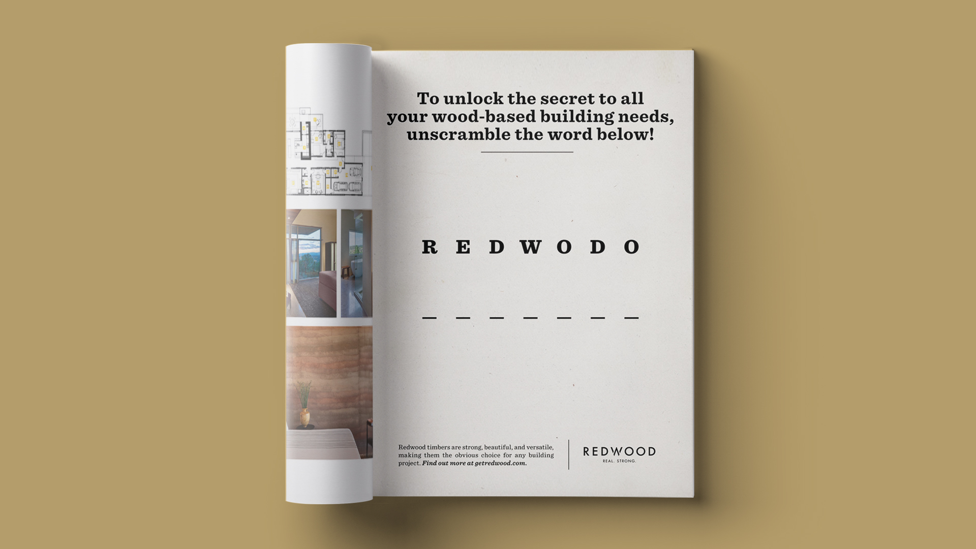Redwood - Obvious Choice